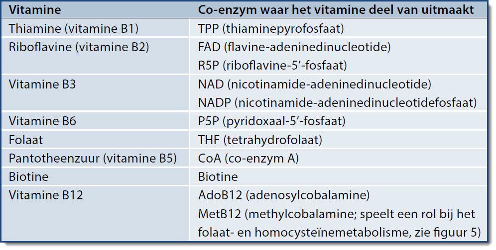 gebrek aan vitamine b